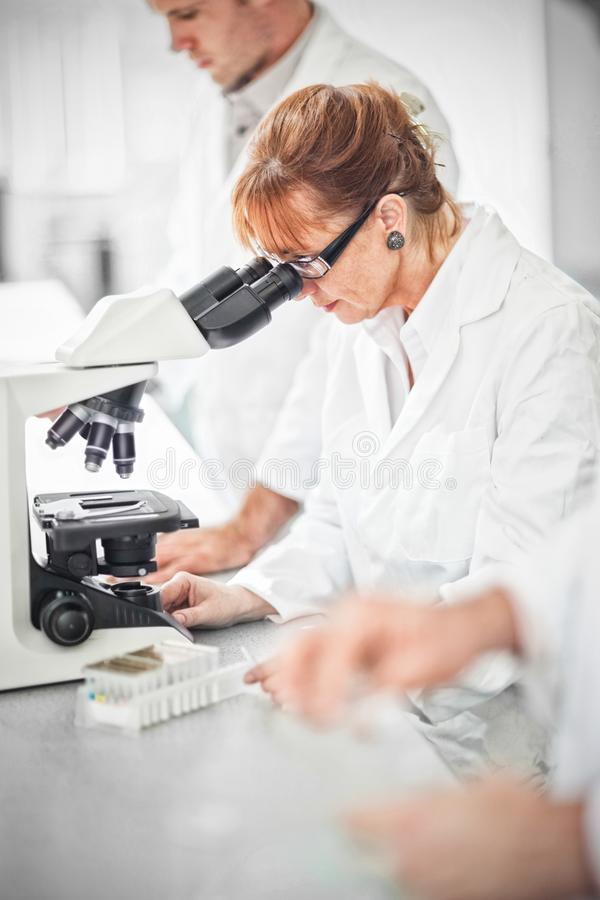 Naukowiec pracuje na mikroskopie zdjęcie stock