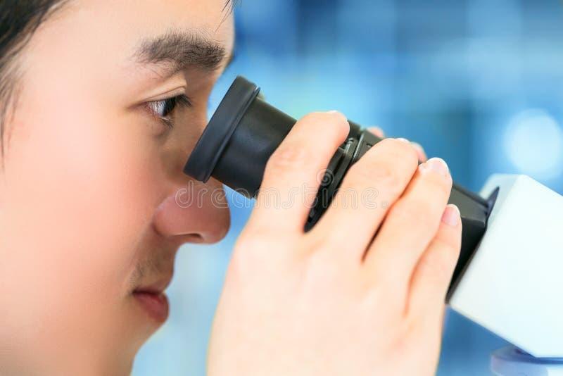 Naukowiec używa mikroskop przy pracą w laboratorium obrazy stock