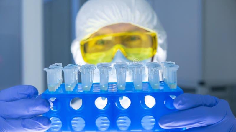 Naukowiec w ochronnym odzieżowym mieniu ustawiającym próbne tubki w laboratorium fotografia royalty free