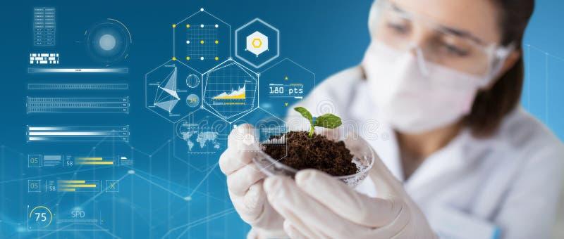 Naukowiec z rośliną i ziemia nad wirtualnymi mapami zdjęcia stock