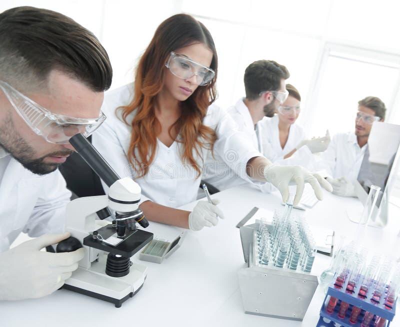 Naukowowie egzamininuje w lab z próbnymi tubkami zdjęcia royalty free