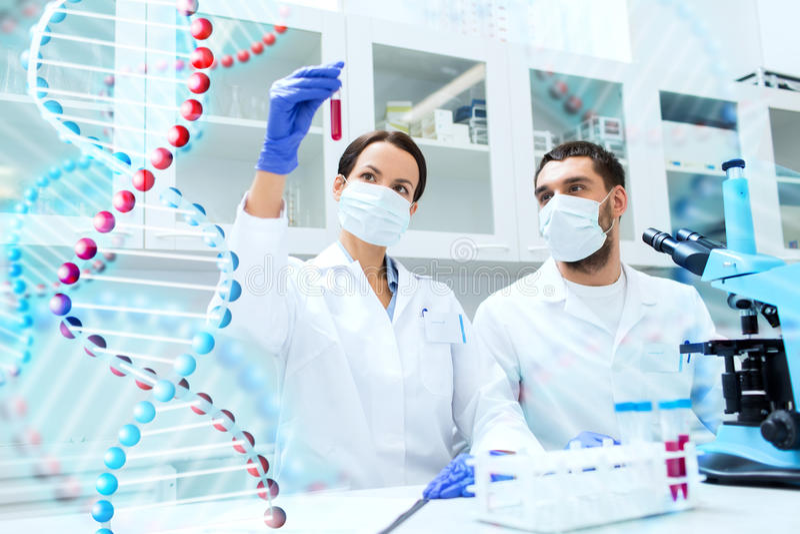 Naukowowie z próbnymi tubkami robi badaniu w lab obraz royalty free