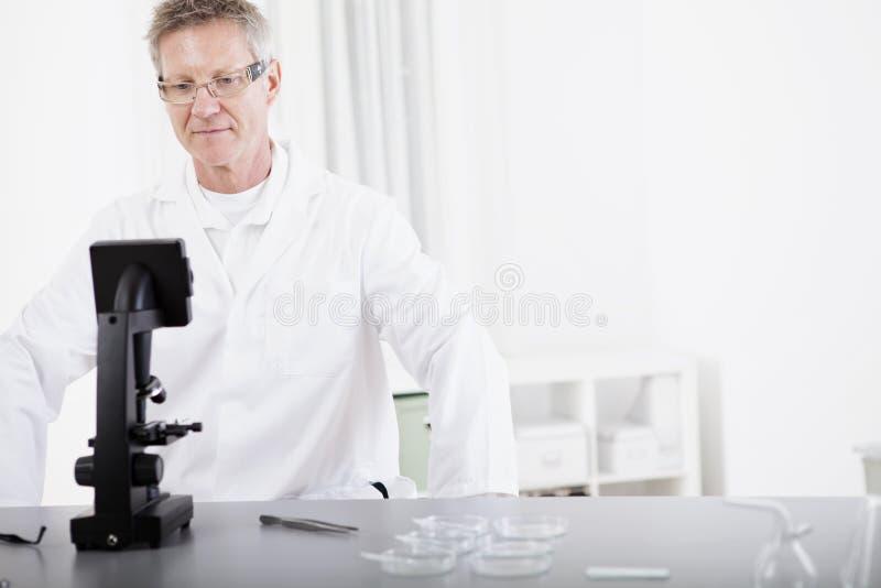 Naukowy badacz z mikroskopem obraz royalty free