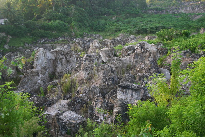 Nauru zdjęcie royalty free