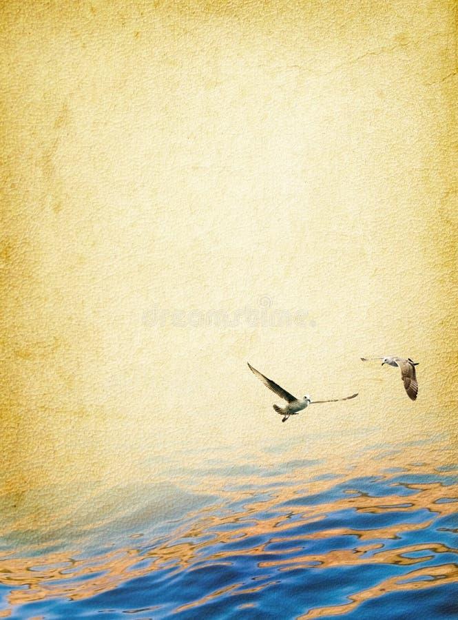 Free Nautical Background Royalty Free Stock Image - 20119866