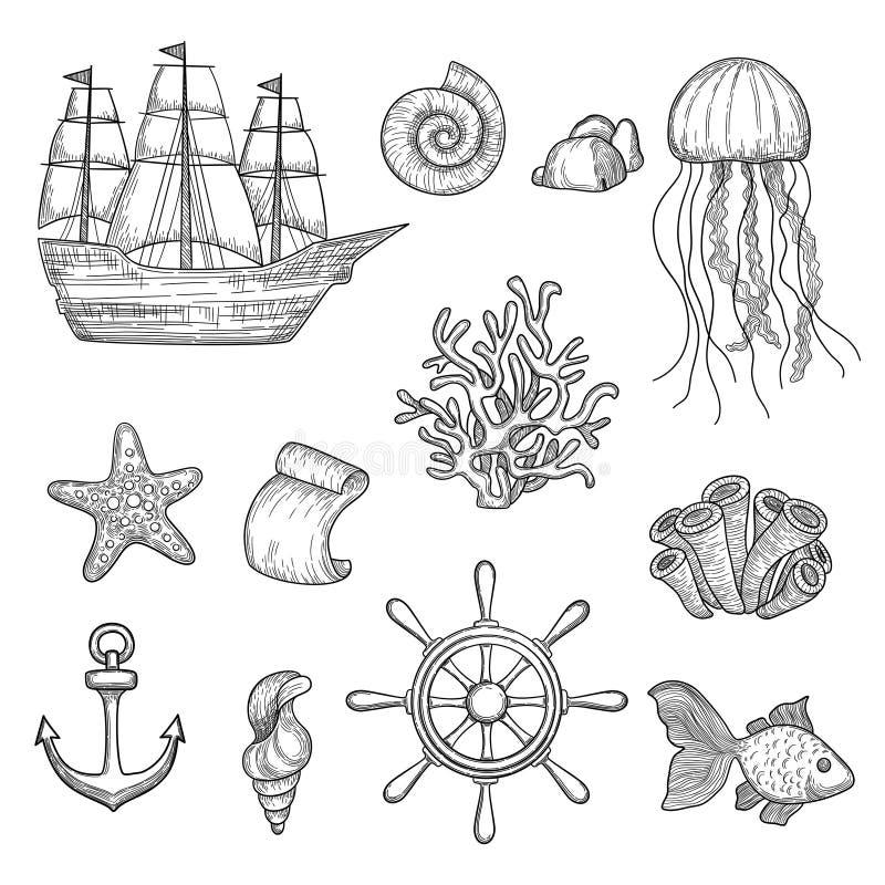 Nautical elements. Ocean fish shells boats ships knot travel marine symbols vector hand drawn collection. Ocean and sea marine elements, boat and shell royalty free illustration