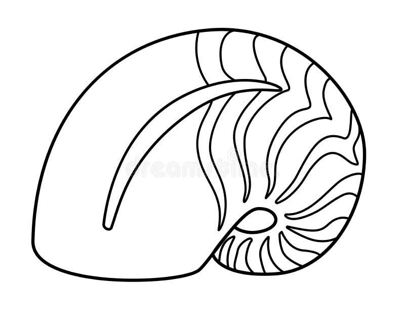 Nautilus - animal de mar, molusco La cáscara del nautilus rayó la cáscara - linear, vector stock de ilustración