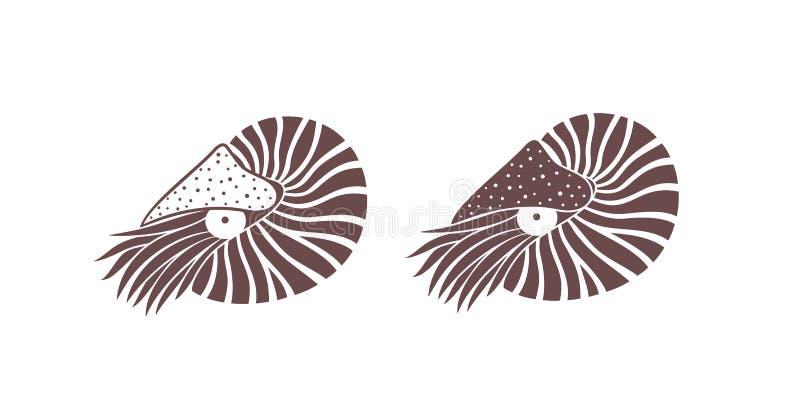 Nautilus Shell Nautilus d'isolement sur le fond blanc illustration stock