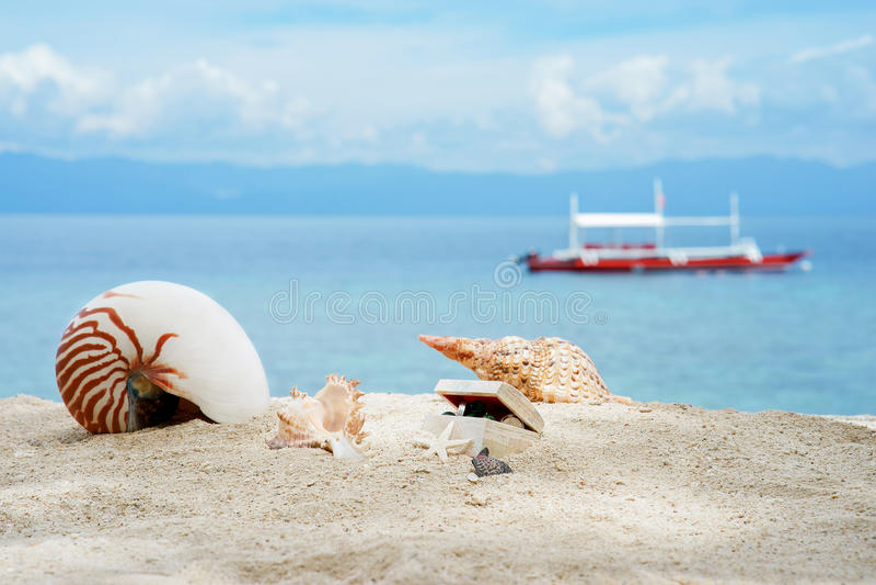 Nautilusen och andra trumpetsnäckor med skatter boxas på den tropiska stranden för vit sand av det filippinska havet för turkos p royaltyfria foton