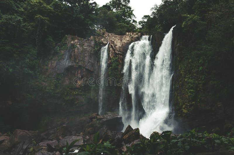 Nauyaca siklawa - Costa Rica fotografia stock