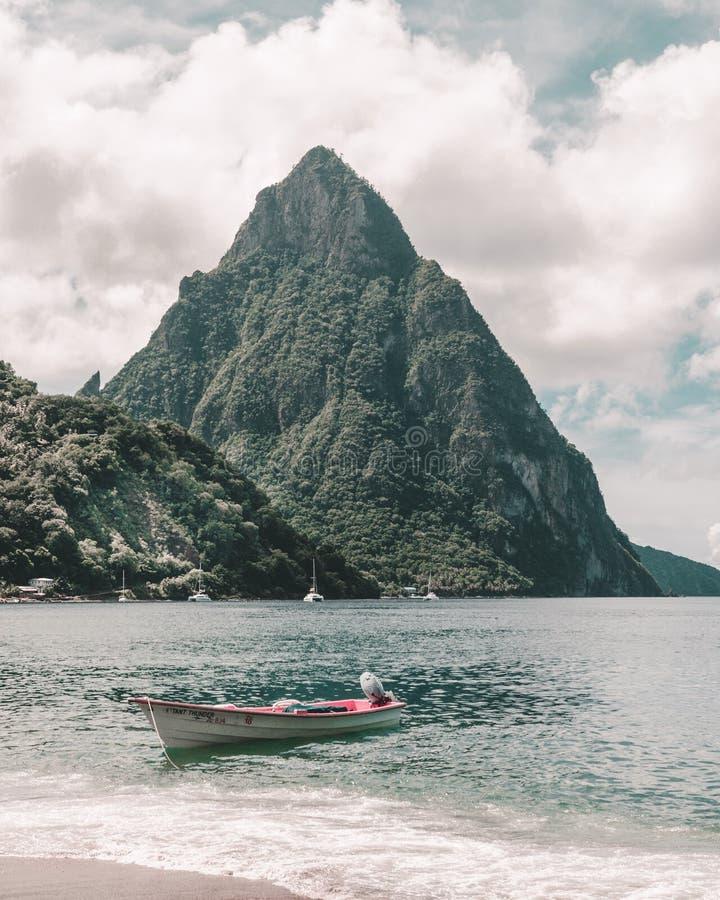 Nauyaca siklawa - Costa Rica obrazy royalty free