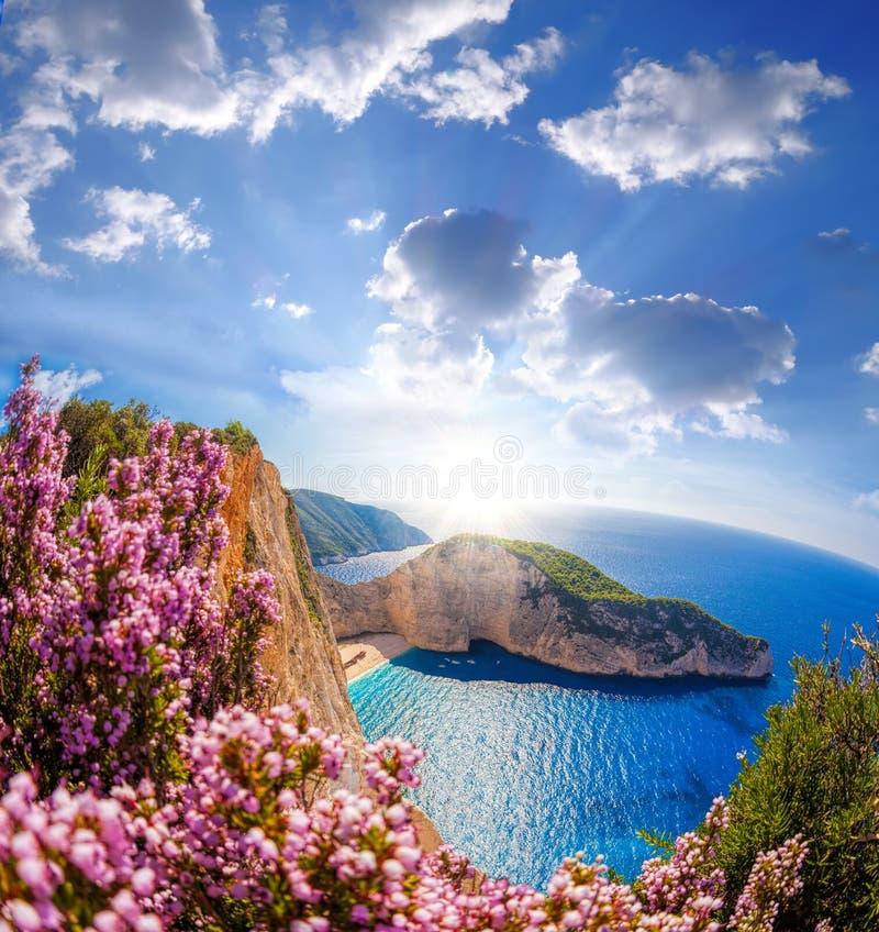 Navagiostrand met schipbreuk en bloemen tegen blauwe hemel op het eiland van Zakynthos, Griekenland stock fotografie