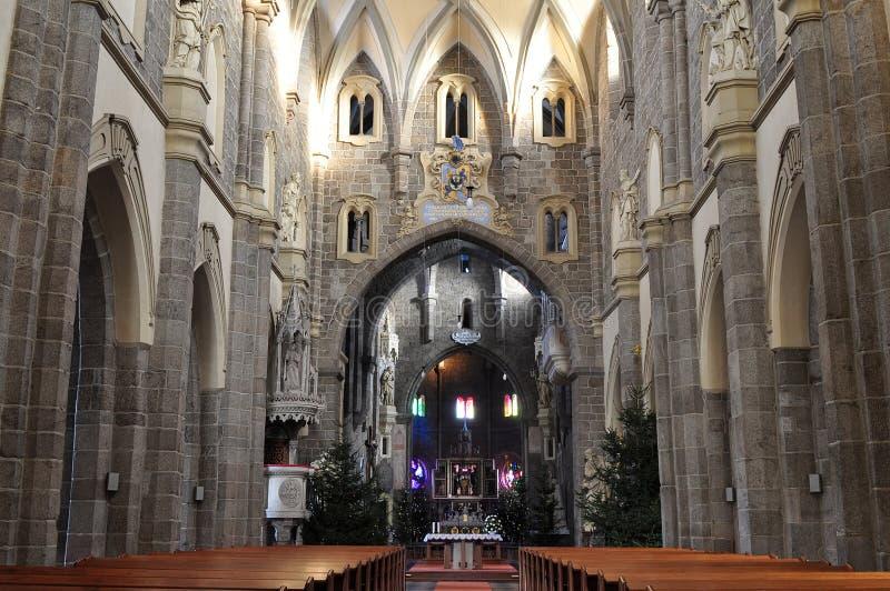 Nave del san gotico Procopius della basilica in Trebic, fotografia stock libera da diritti
