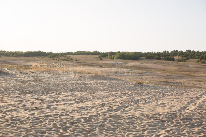 nave steppe Zand het landschap van het behoudsgebied royalty-vrije stock foto's