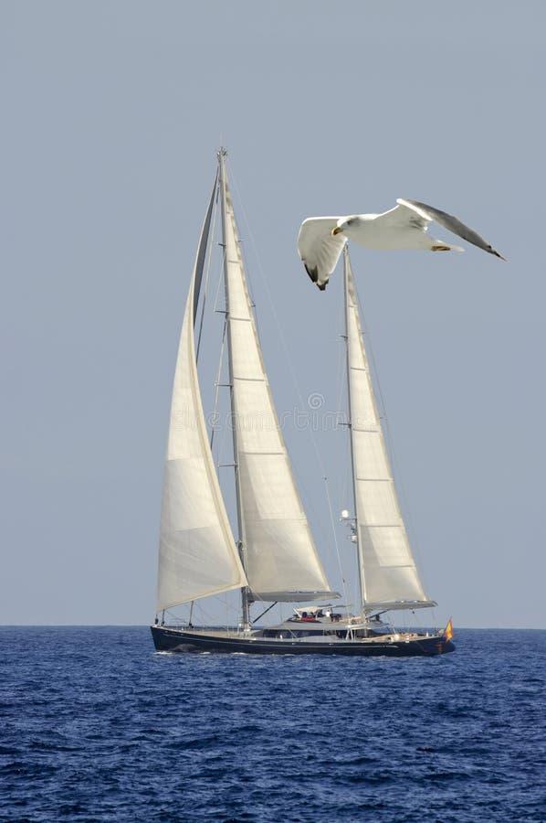 Navegue para navegar por completo en el mar abierto fotografía de archivo