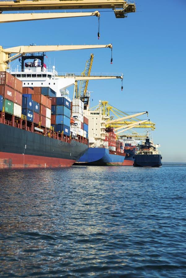 Navi porta-container messe in bacino immagini stock libere da diritti
