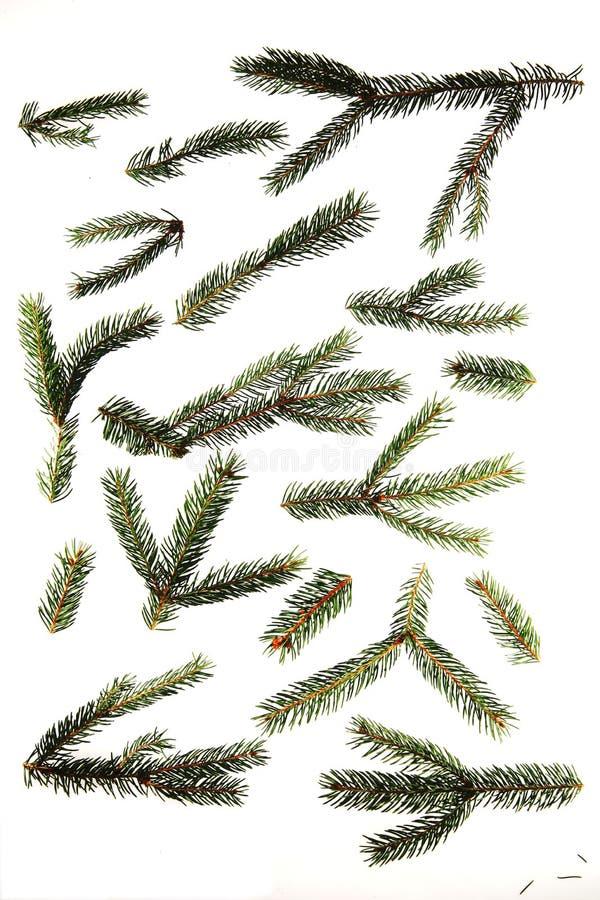 Navidad-Bolas fotos de archivo libres de regalías