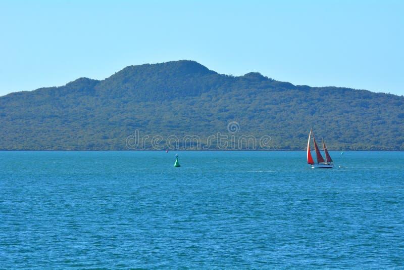 Navigação do iate do barco de vela perto da ilha Nova Zelândia de Rangitoto foto de stock