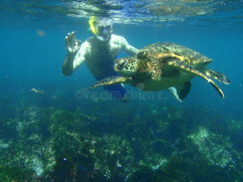 Navigando Usando Una Presa D Aria Con Una Tartaruga Di Mare Immagine Editoriale