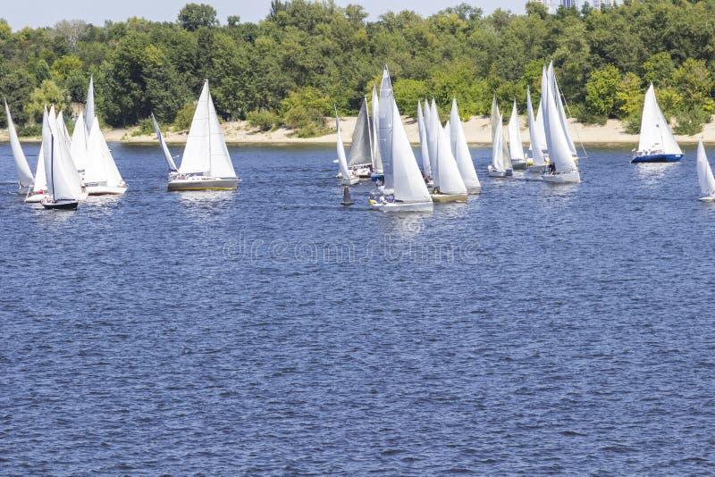 Navigation de la régate : beaucoup de voiliers sur l'eau photos libres de droits