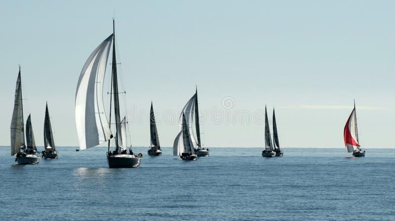 Navigation de la régate dans la baie de Cannes photo libre de droits
