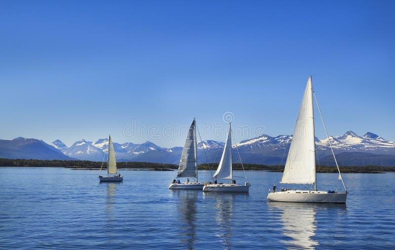 Navigation de voiliers, ciel nuageux bleu et voiles blanches Molde Norvège, l'Europe images libres de droits