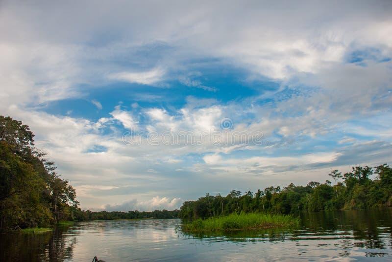 Navigazione giù il fiume in mezzo della giungla di Amazon Rio delle Amazzoni, Manaus, Amazonas, Brasile fotografie stock libere da diritti