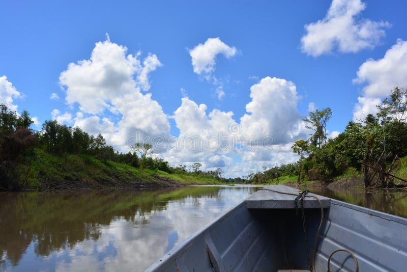 Naviguant sur le fleuve Amazone, dans la jungle d'Amazone, le Pérou photographie stock libre de droits