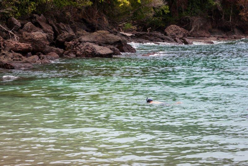 Naviguer au schnorchel en Manuel Antonio photo libre de droits