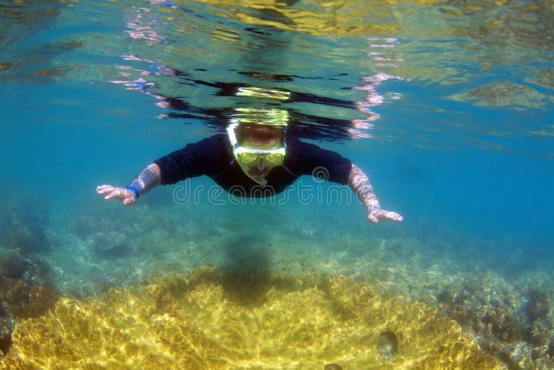 Naviguer au schnorchel sur la Grande barrière de corail images stock