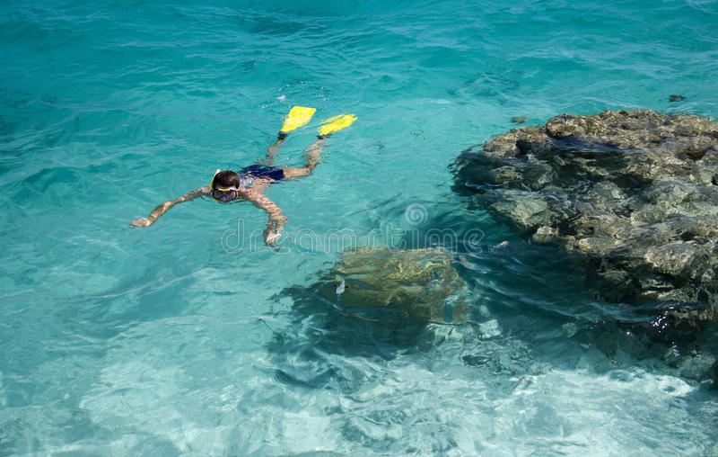 Naviguer au schnorchel - vacances tropicales image libre de droits