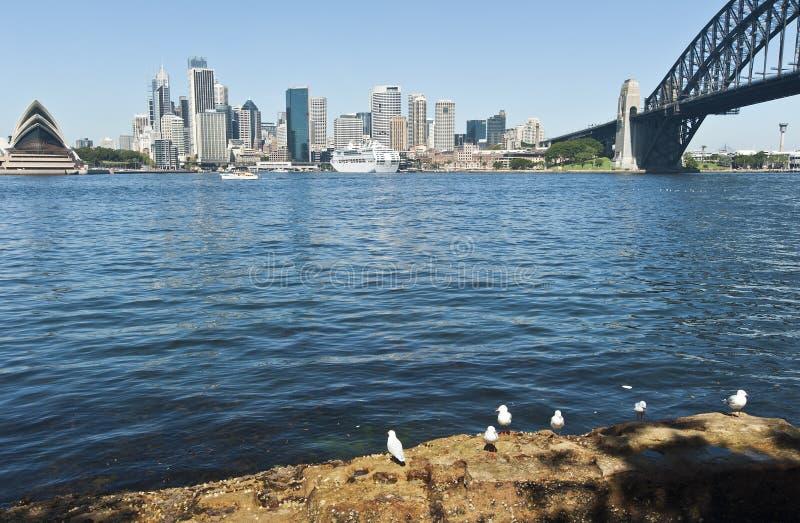 Navio de cruzeiros ancorado em Sydney foto de stock royalty free