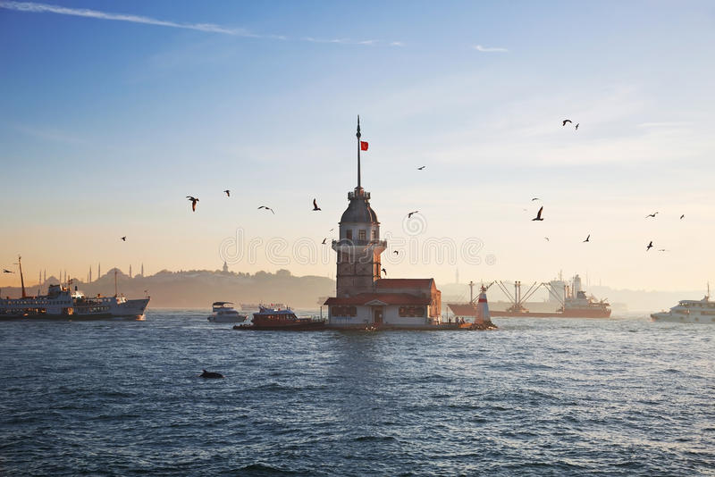 Navios, gaivota, golfinho, torre nova no Bosphorus imagens de stock