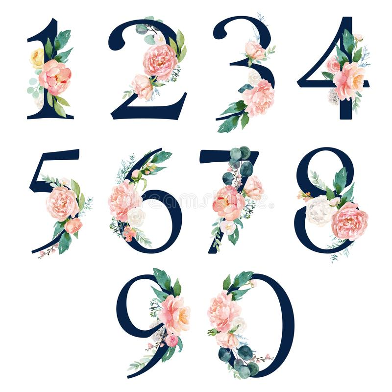 Free Navy Floral Number Set - Digits 1, 2, 3, 4, 5, 6, 7, 8, 9, 0 With Flowers Bouquet Composition Stock Photo - 166151500