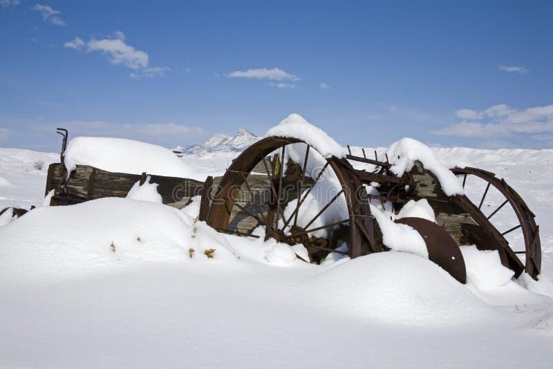 Nawóz powlekaczka w śnieżnym banku zdjęcia royalty free