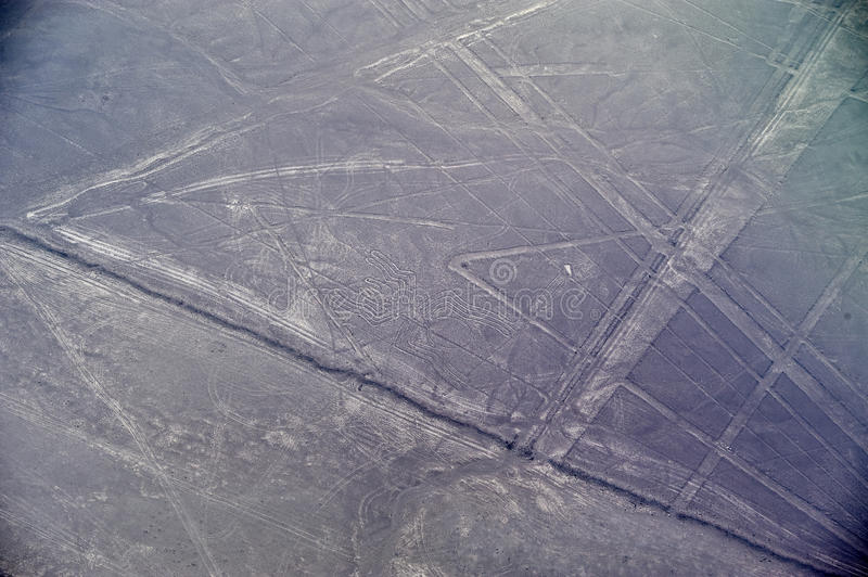 Nazca lines - The Spider. Nazca lines, ancient geoglyphs - The Spider royalty free stock photography