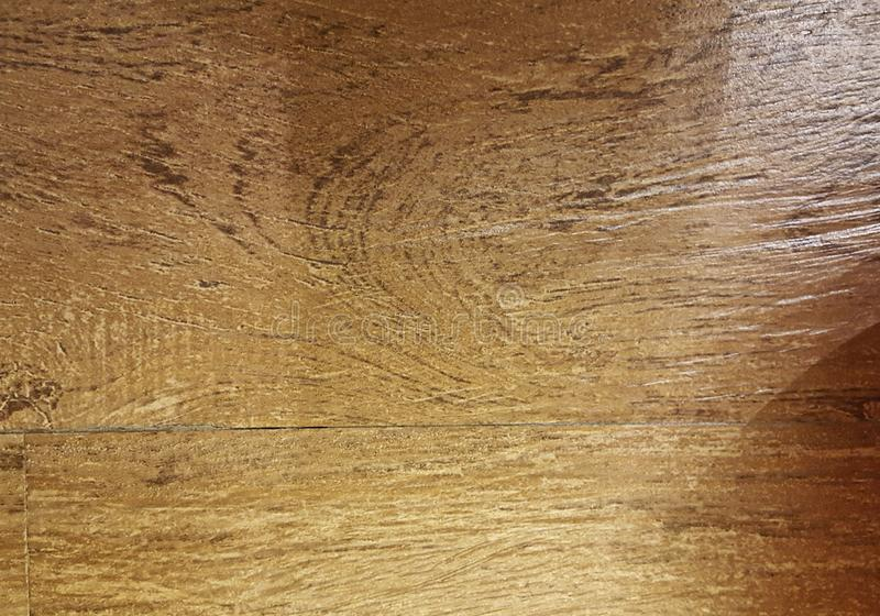 Wood texture - oak - illuminated - light brown royalty free stock photography