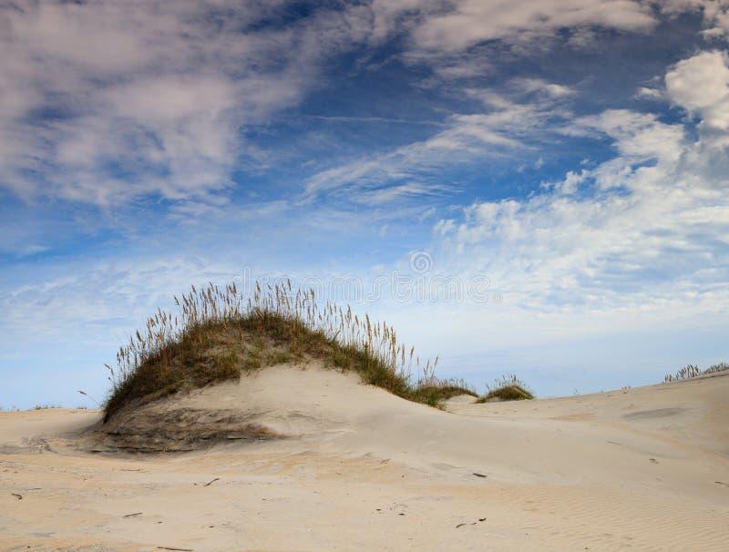 NC海滩横向: 沙子海运燕麦和沙丘 库存图片