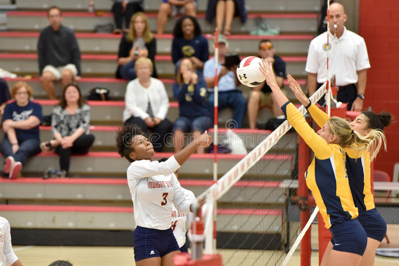 2015 NCAA Volleyball - Kent State en Morgan State stock foto