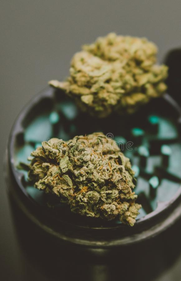 NClose-up of buds of marijuana lying on a metal grinder. Insta size for publication in stories royalty free stock images