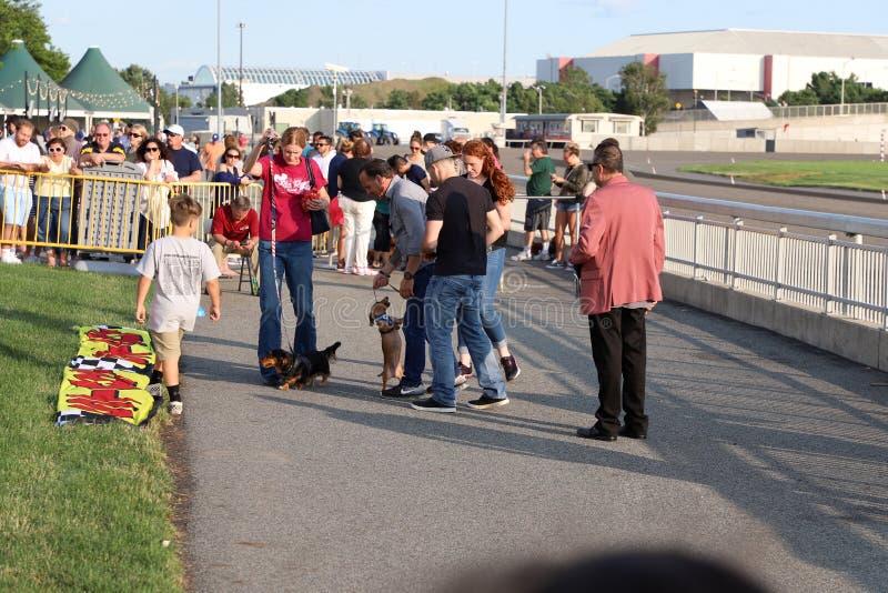 2nd årliga frankfurterkorvhund Derby Family Fun fotografering för bildbyråer