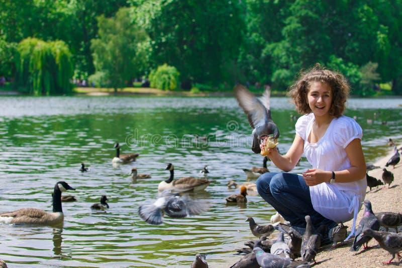 nd девушки птиц стоковое фото rf