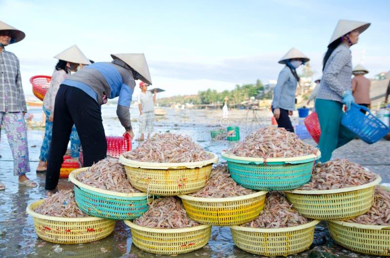 Pescatori vietnamiti sul lavoro fotografia stock