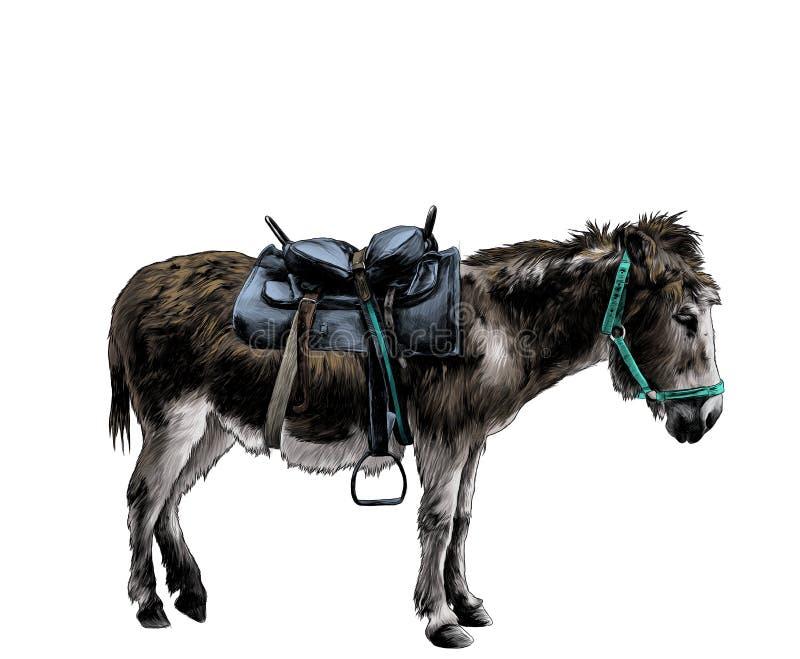 Âne habillé dans des supports d'équipement en longueur dans le profil intégral illustration libre de droits