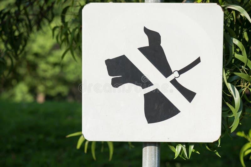 Ne permettez pas à des chiens le signe de bannière établi dans la zone verte de parc avec le fond vert image libre de droits