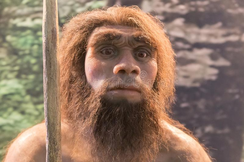 Neanderthal figure, recreation of an human royalty free stock photo