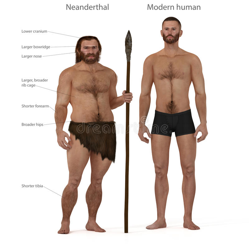 Neanderthaler versus moderne mens royalty-vrije illustratie