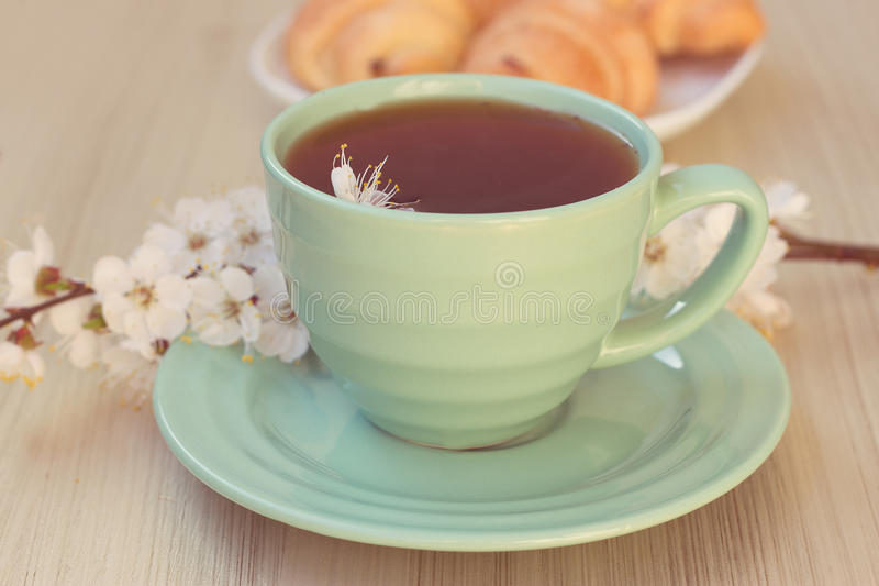 Near blomstra filialer för kopp te och för giffel royaltyfri fotografi