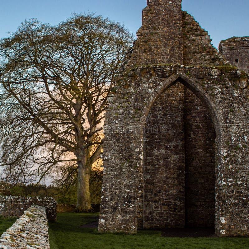 Near klippning Co Meath för gammal slott arkivfoton