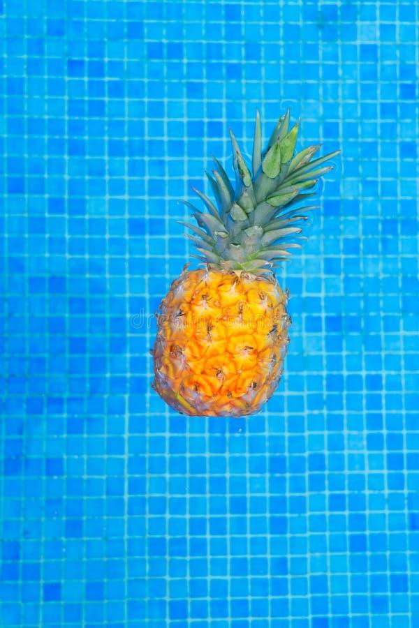 Near pöl för ananas arkivfoton